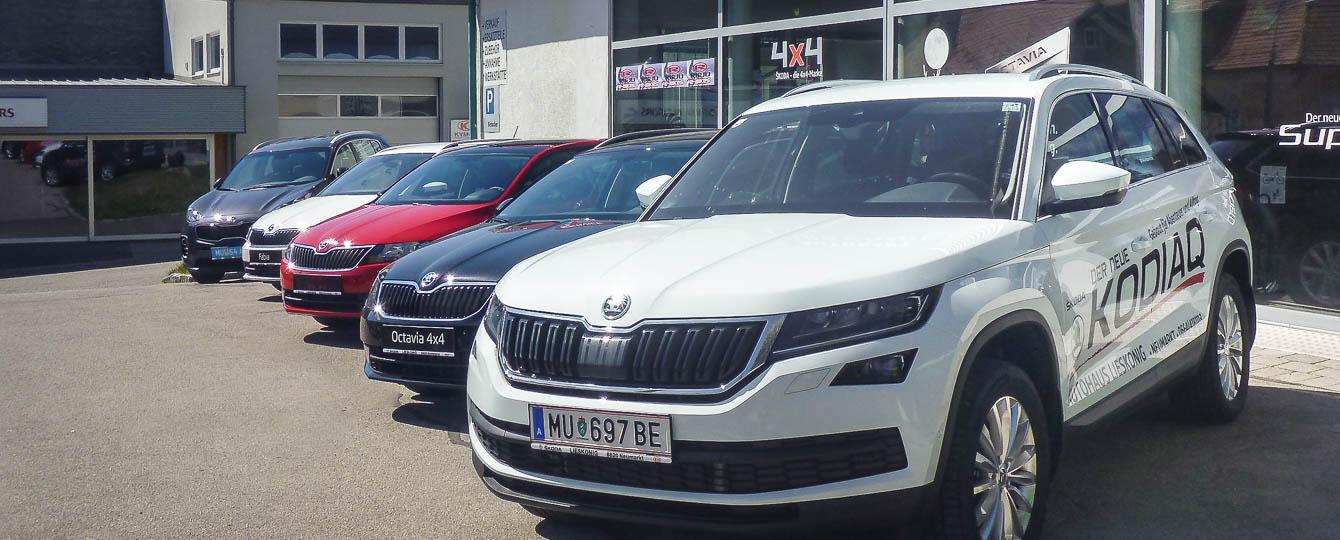 Autohaus Lieskonig GmbH, Ihr Spezialist fr Skoda,Autohaus, Auto, Carconfigurator, Gebrauchtwagen, aktuelle Sonderangebote, Finanzierungen, Versicherungen